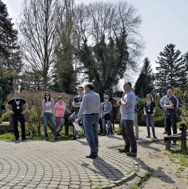 Szatmárcseke - temető